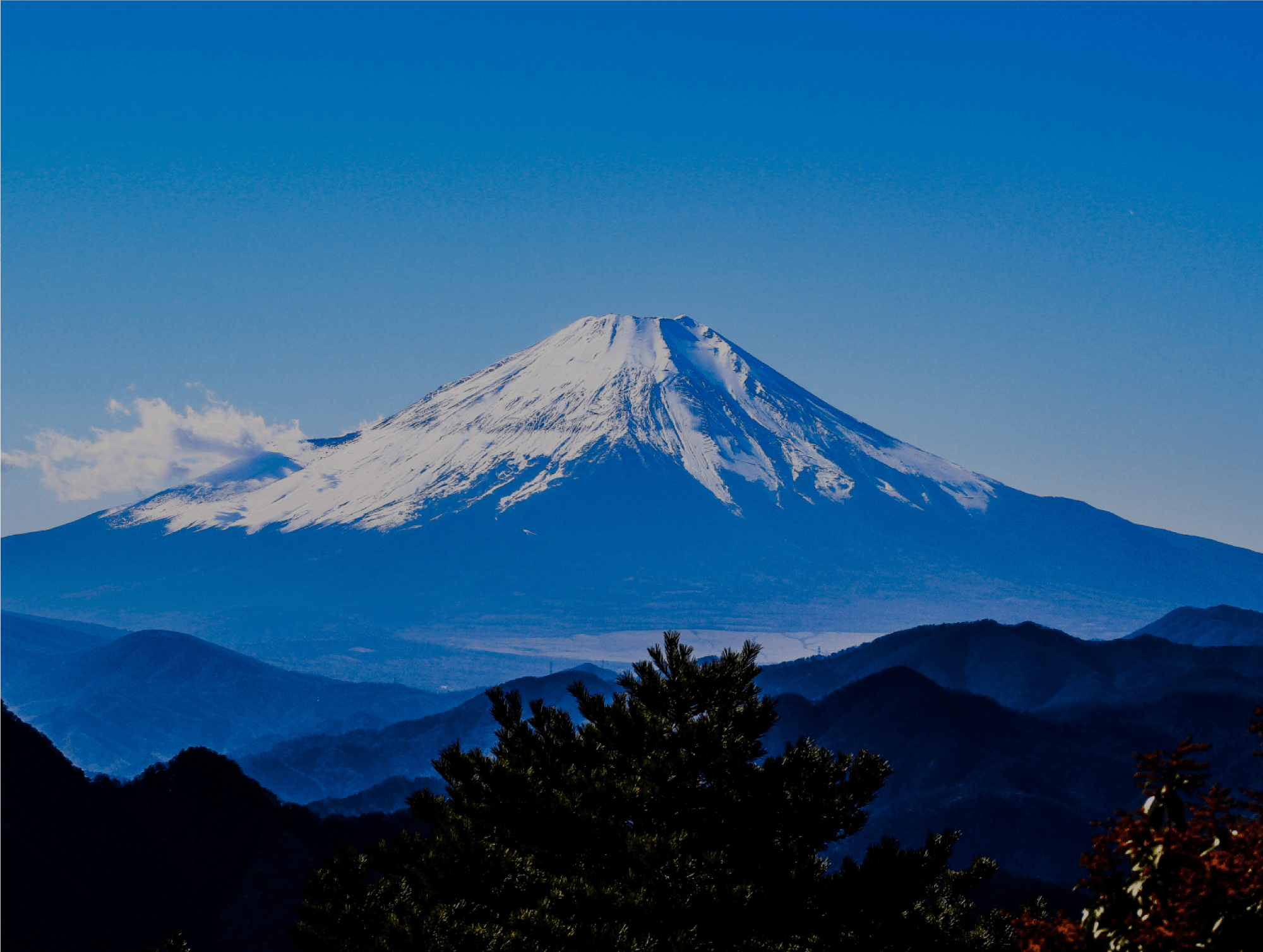 Mount Fuji is in front of you!